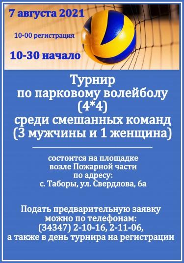 афиша волейбол день села.jpg